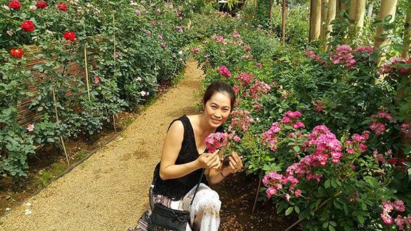 Hoa hongg Thai